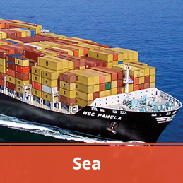 Forceget Logistic Transportation Sea Seafreight