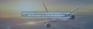 Forceget Global Logistic Transportation Air Freight